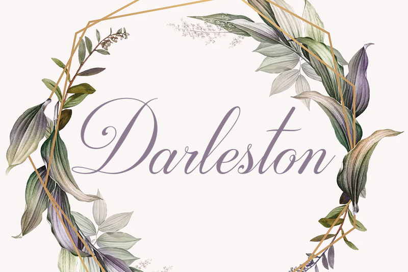darleston wedding font