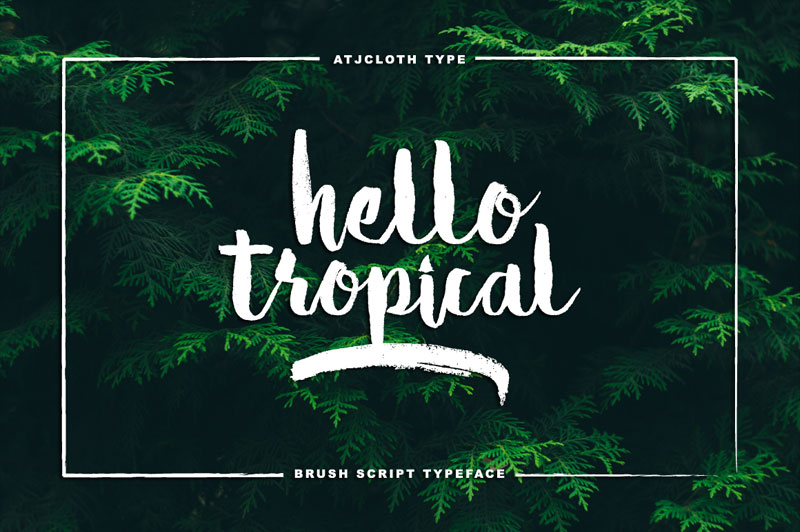 hello tropical summer and beach font