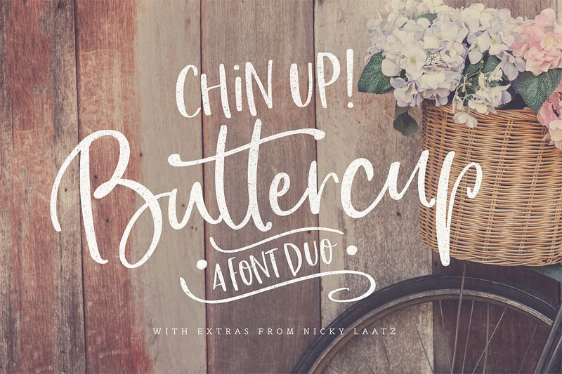 chin up buttercup thank you font