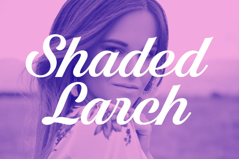 shaded larch thank you font