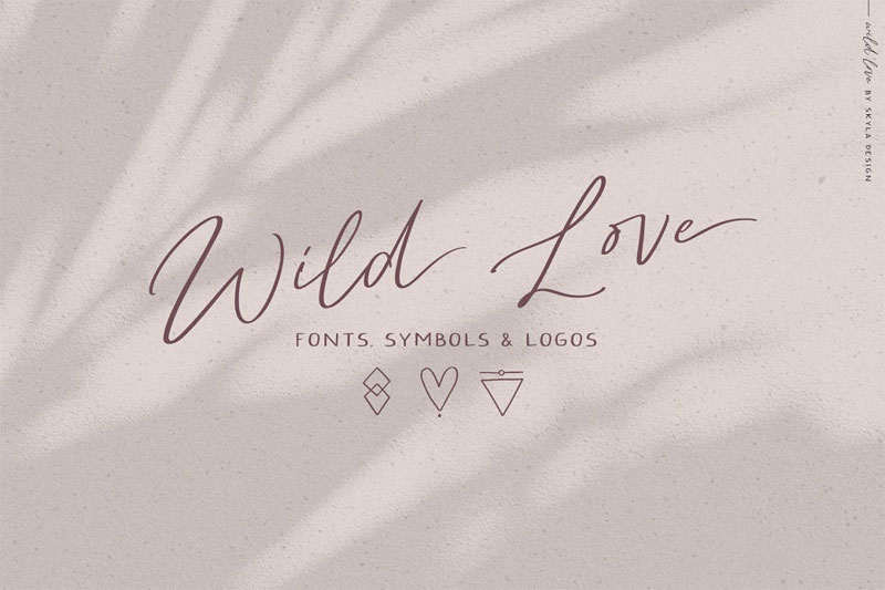 wild love thank you font