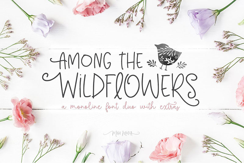 among the wildflowers flower font