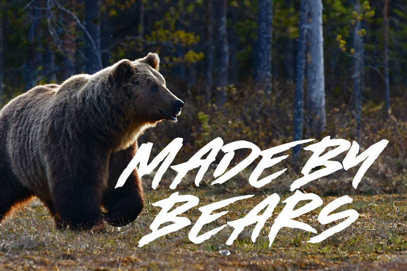 made by bears animal font