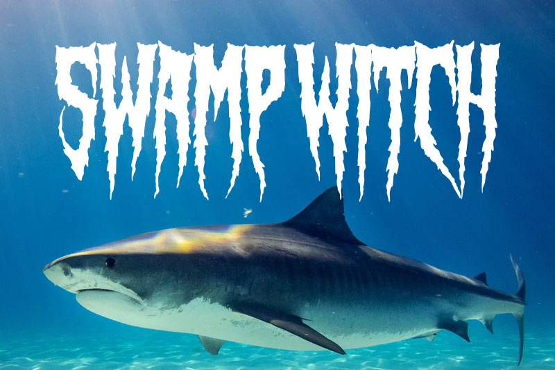 swamp witch animal font